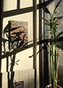 Morning kitchen (kimbar/Thanks for 3 million views!) Tags: home shadows light oakland california morning kitchen plant bamboo window tile