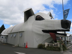 2017-110645 (bubbahop) Tags: 2017 newzealand tirau architecture dogs building corrugated metal dog