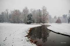 Prove d'inverno (stefano.chiarato) Tags: inverno immaginidalnord parcodimonza neve snow reflections riflessi lombardia italy monza pentaxart pentax pentaxlife pentaxk70 parco