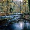 Autumn Flow - Fuji Provia 100F (magnus.joensson) Tags: sweden swedish skåne skäralid söderåsen autumn color rolleiflex 35 fuji provia 100f 6x6 medium format e6 epson v800 scan