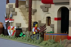 Age of Empires II: Ethiopian Stables (jsnyder002) Tags: lego creation moc build model display aoe ii aoeii age empires water trough window design arch camel ostrich wall texturing banner awning stairs dome pillars