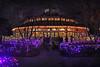 Christmas Carousel (skipmoore) Tags: citypark neworleans carousel merrygoround christmas lights