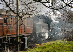 43106 leaving Highley with 1231hrs for Kidderminster. 30 December 2017. (ricsrailpics) Tags: uk shropshire highley severnvalleyrailway svr flyingpig preservedsteam 2017