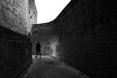 (cherco) Tags: man castle castillo shadow human humano hombre lonely alone solitario silhouette silueta sombra street solitary sombras composition composicion canon enter gate puerta blancoynegro blackandwhite monochrome aloner arch arco andar adoquinado walker light luz figure arquitectura architecture sundaylights