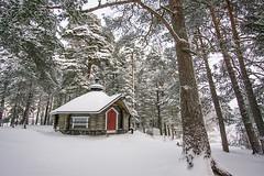 Joensuu - Finland (Sami Niemeläinen (instagram: santtujns)) Tags: joensuu suomi finland luonto nature kuhasalo lumi snow talvi winter lake frozen pyhäselkä järvi metsä forest