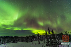 _DSC3634 (OliverCui) Tags: aurora yellowknife northwest canada northern light night winter snow