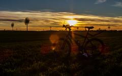 StarStaX_MTB  ferig (jrgweckerle) Tags: samsungex2f natur mtb sonnenuntergang fahrradtour fahrrad brandenburg starstax blauestunde stimmung