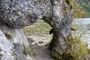 The Badly Hidden Dog (ivlys) Tags: allemagne germany bayern bavaria allgäu weisensee see lake torbogen archway hund dog versteckt hidden landschaft landscape natur nature ivlys