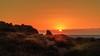 The path (Enrico Cusinatti) Tags: arancione orange sole sun sea sky sunset sardegna cielo enricocusinatti italy italia viaggi landscape rocks travel tramonto vegetazione