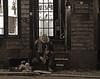 Newport Sax (Dionepsoc) Tags: homeless saxaphone alone newportri suitcase stuffedanimals playformoney 1963 drifter sax homelesspeople homelessperson