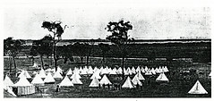 Black and White Photograph of Tents and Soldiers at Fort Lytton, Brisbane - Queensland Defense Force encampment on the slopes of Lytton Hill probably looking towards Whyle Island across Crab Creek, at the entrance to the Brisbane River (Queensland State Archives) Tags: brisbane fortlytton military encampment queensland historicbuildings lyttonhill tents soldiers whyleisland crabcreek brisbaneriver