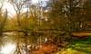 AUTUMN COLOURS AT BERINGTON (chris .p) Tags: berrington hall nikon d610 reflection herefordshire uk autumn 2017 capture nt nationaltrust november england