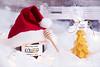 CE1A7439_S1 (MiliRadeva) Tags: kosher кошер honey hat toys christmas tree candle bee shop snow love family together calmness decoration emotion snowflake