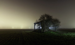 A Place From Your Dreams (Rob Pitt) Tags: fog eastham oil refinery at night wirral canon 750d cheshire barn field sky grass tree dramatic minimal foggy mist lightpainting torchlit merseyside england rob pitt photography