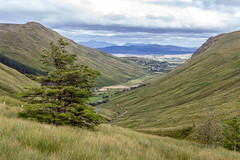 Ireland - Ardara - Glengesh Pass Valley (Marcial Bernabeu) Tags: ireland irlanda irish irlandes irlandés irlandesa ardara valle valley glengesh pass view landscape marcial bernabeu bernabéu
