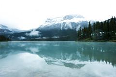 Emerald Lake (Pericles Brea) Tags: lake lago lagoesmeralda emeraldlake yohonationalpark britishcolumbia canada paisaje paysage 9376951 myfavourites