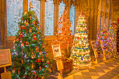 4U5A6419 (bartlett2) Tags: | worcester cathedral christmas trees worcestershire
