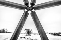 De zandloper (johan wieland) Tags: 2017 kootwijk kootwijkerzand veluwe winter zandloper