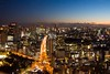 Amazing Tokyo by night, Japan (berengere.cavalier) Tags: buildings bynight highway highways horizontal hyatt japan japanese landscape lights longexposure night nightphotography nightview nippon nopeople outdoors parkhyatt shinjuku skycrapers skyline skyscraper skyscrapper skyscrappers tokyo tokyotower towers urban urbanphotography urbanscape urbex