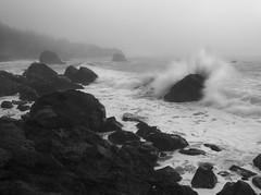 Patrick's Point State Park (Christmas Afternoon), Trinidad, Humboldt County, CA, December 2017 (Martin Swett) Tags: patrickspointstatepark waves trinidad humboldtcounty humboldt eureka fog