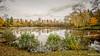 Belle endroit. (musette thierry) Tags: musette thierry nikon paysage belgique hainaut etang vue 1835mm brunehaut