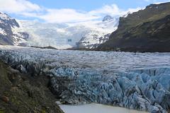 Svínafellsjökull  Islande (jc.dazat) Tags: svínafellsjökull islande glacier paysage landscape glace ice photo photographe photographie photography canon jcdazat