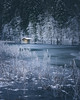 Hidden (--StadtKind--) Tags: alphaddicted teamsony sonyfe2470mmf28gm sonyilce7m2 stadtkind bayern bavaria see lakeside roaming naturephotography nature landscape landschaft