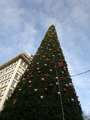 2017-12-23-12373 (vale 83) Tags: christmas tree knez mihailova street belgrade serbia nokia n8 coloursplosion colourartaward friends
