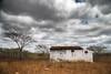 Casebre sertao_9810 (Luciano_Alves_Foto) Tags: green seco sertão chuva nuvens cinza solidão solitária solitário árvore mato bege ocre casebre casa abandono abandonada casaabandonada nuvemcinza tempestade
