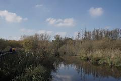 Tegeler Fließ - Berlin (elisachris) Tags: berlin tegelerflies landschaft landscape natur nature sonya7s rokkor 35mm manuallens vintageoptica