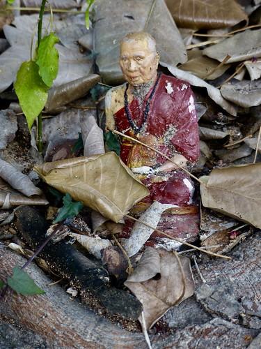 meditating, Chiang Mai