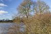 Ems bei Wachendorf_IMG_2003 (milanpaul) Tags: blauerhimmel bäume canoneos6d deutschland eichen ems emsland fluss germany landscape landschaft lingen nachmittag niedersachsen sonnenschein tamron2470mmf28divcusd wachendorf weide wiese winter überschwemmung