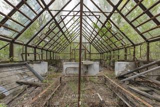 nuclear school gardening