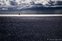 Sea of Jewels (xxKnuckles) Tags: hawaii pacificocean usa beautiful blue boat calm clouds glittering isolated lonely ocean peaceful sailboat sea seascape serene sparkling water