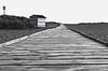 The Hutwalk (Compactman) Tags: norfolk eastanglia beach coast hut beachhut bw blacandwhite monochrome touchofcolour wood boardwalk decking seaside dunes pathway walkway panasonic lumix g7