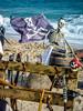 Il était une fois... 1720 ! (moutoons) Tags: 1720 festival historique laciotat pirates peste ville portvieux port noblesse abbaye abbé bateau femmes festivalhistorique ilétaitunefois1720 marseille provence voyage temps noble marins