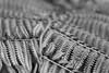 Limahuli Garden (Tony Pulokas) Tags: hawaii kauai tilt blur bokeh leaf tropicalrainforest limahuligarden limahulivalley nationaltropicalbotanicalgarden forest fern treefern hawaiiantreefern cibotium hāpuʻu