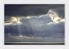 - DSC_3875 (Ferruccio Jochler) Tags: mare cielo gabbiano luce nuvole orizzonte jhonatan