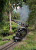 NA's (Dobpics O'Brien) Tags: puffingbilly pbr puffing pbps pass billy locomotive landslide 7a 8a belgrave victorian victoria vr steam engine train rail railway railways narrow gauge