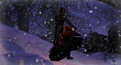 SnowMobile mayhem (spiritwingtips.photography) Tags: {vale koer} remarkable oblivion sau