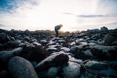 Asilomar beach. (Playground Sideways) Tags: xseries xpro2 fujifilm california pacificgrove asilomarbeach montereybay