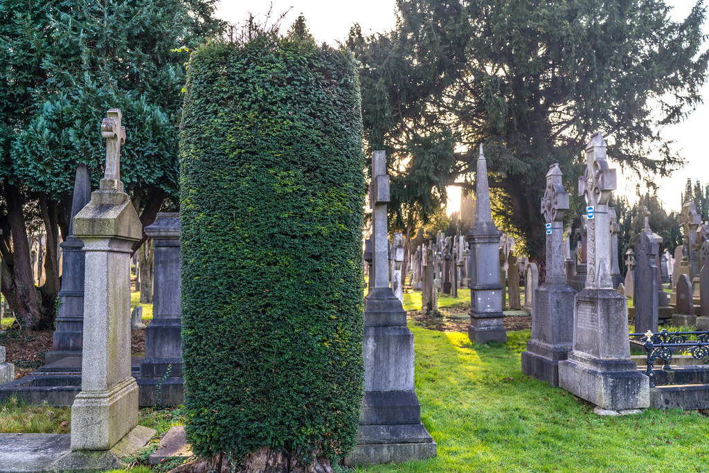 VISIT TO GLASNEVIN CEMETERY IN DUBLIN [FIRST SESSION OF 2018]-135085