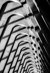 arches and arches (Blende1.8) Tags: shadows schatten arches bogen bögen boegen lines licht light repetition wiederholung structure station bahnhof santiagocalatrava calatrava architecture architektur modern contemporary zeitgemäs mono monochrome monochrom schwarzweis blackandwhite liègeguillemins liège lüttich belgien belgium carstenheyer sony alpha ilce7m2 a7ii a7m2 85m curves curvy schwarz weiss