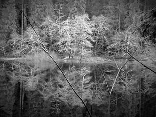 Spider lake BW (Explored)