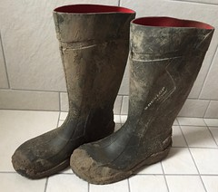 Dunlop Purofort+ (Noraboots1) Tags: dunlop wellies purofort rubber boots gummistøvler gummistiefel workboots workwear arbejdstøj