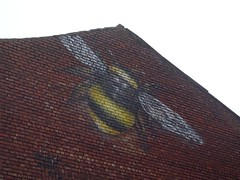 Manchester bee (stillunusual) Tags: manchester mcr city england uk northernquarter nq backpiccadilly manchesterstreetphotography streetphotography bee manchesterbee insect street urban urbanscenery streetart urbanart urbanwalls wall wallart wallporn graffiti graffitiporn mural 2017