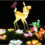 Butterfly Bambi thumbnail