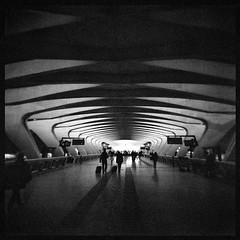 (julien_o_O) Tags: holga film fomapan bw nb airport lyon aéroport square fomapan400