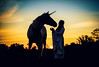 unicorn (Jen MacNeill) Tags: horse horses mood equine unicorn maiden woman sunset magic magical