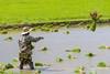 ChiangRai_2327 (JCS75) Tags: asia asie thailand thailande chiangrai canon